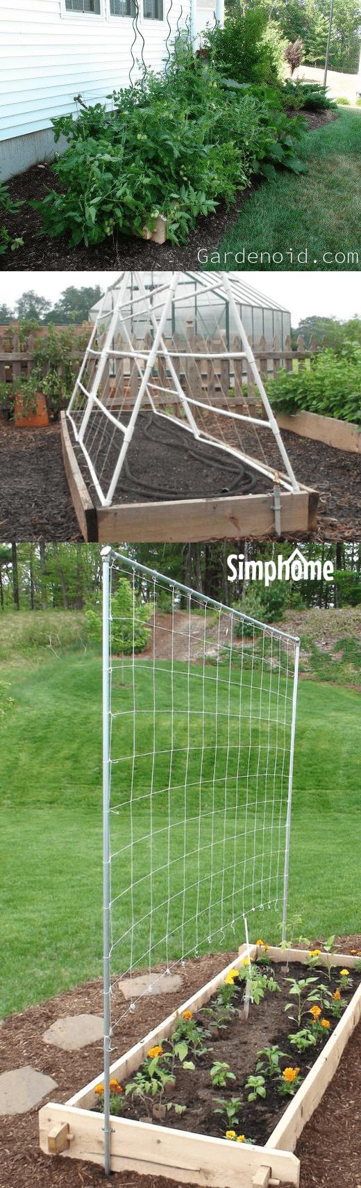 Simphome.com .1.String Trellis Project idea