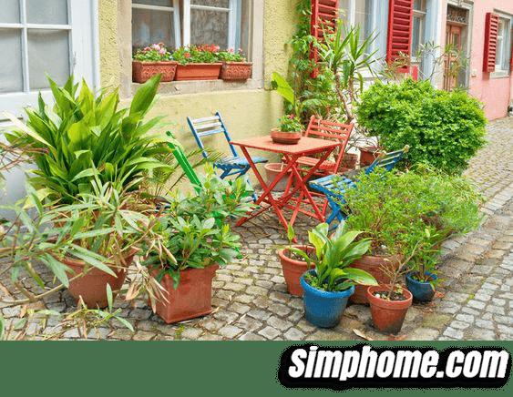 2.Simphome.com Street Style Garden