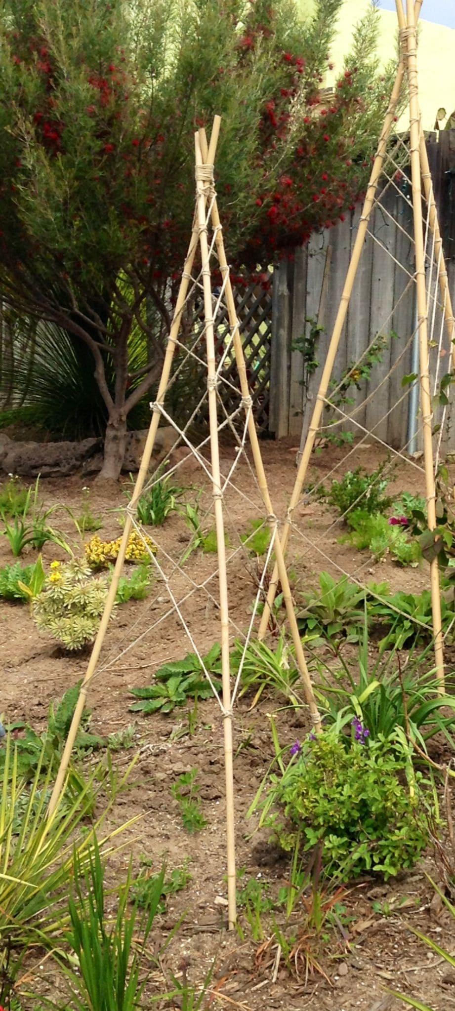 5.Simphome.com Bamboo and Twine 2