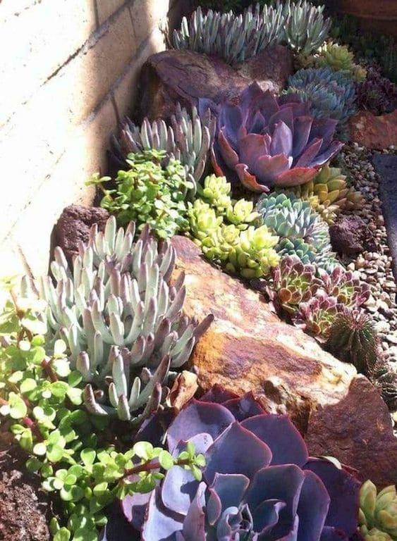 6.Simphome.com Terracotta with Succulents