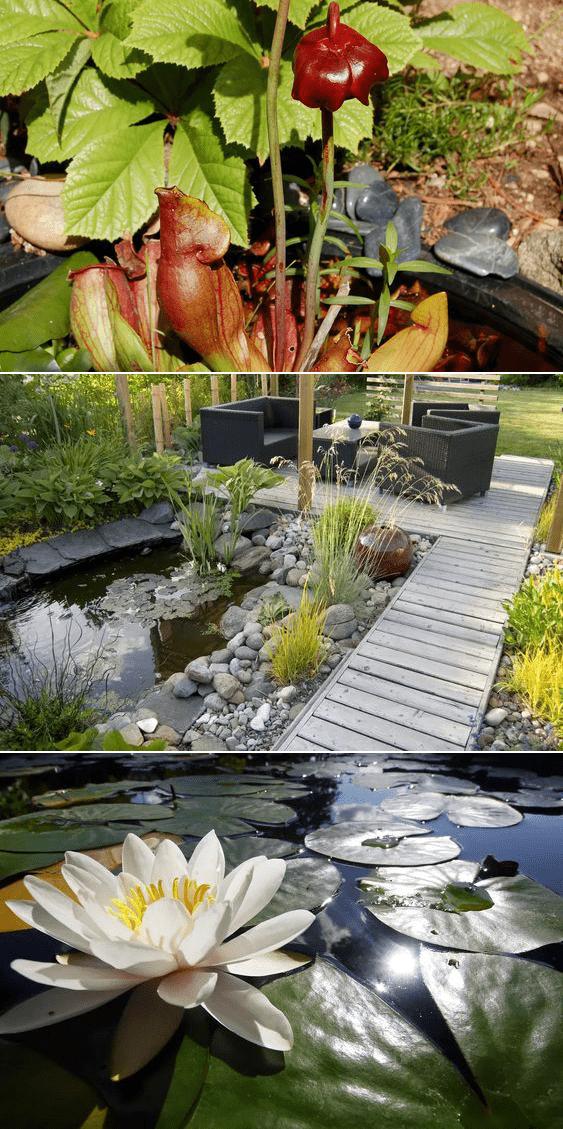 8.Simphome.com A Pond Surrounded with Rocks