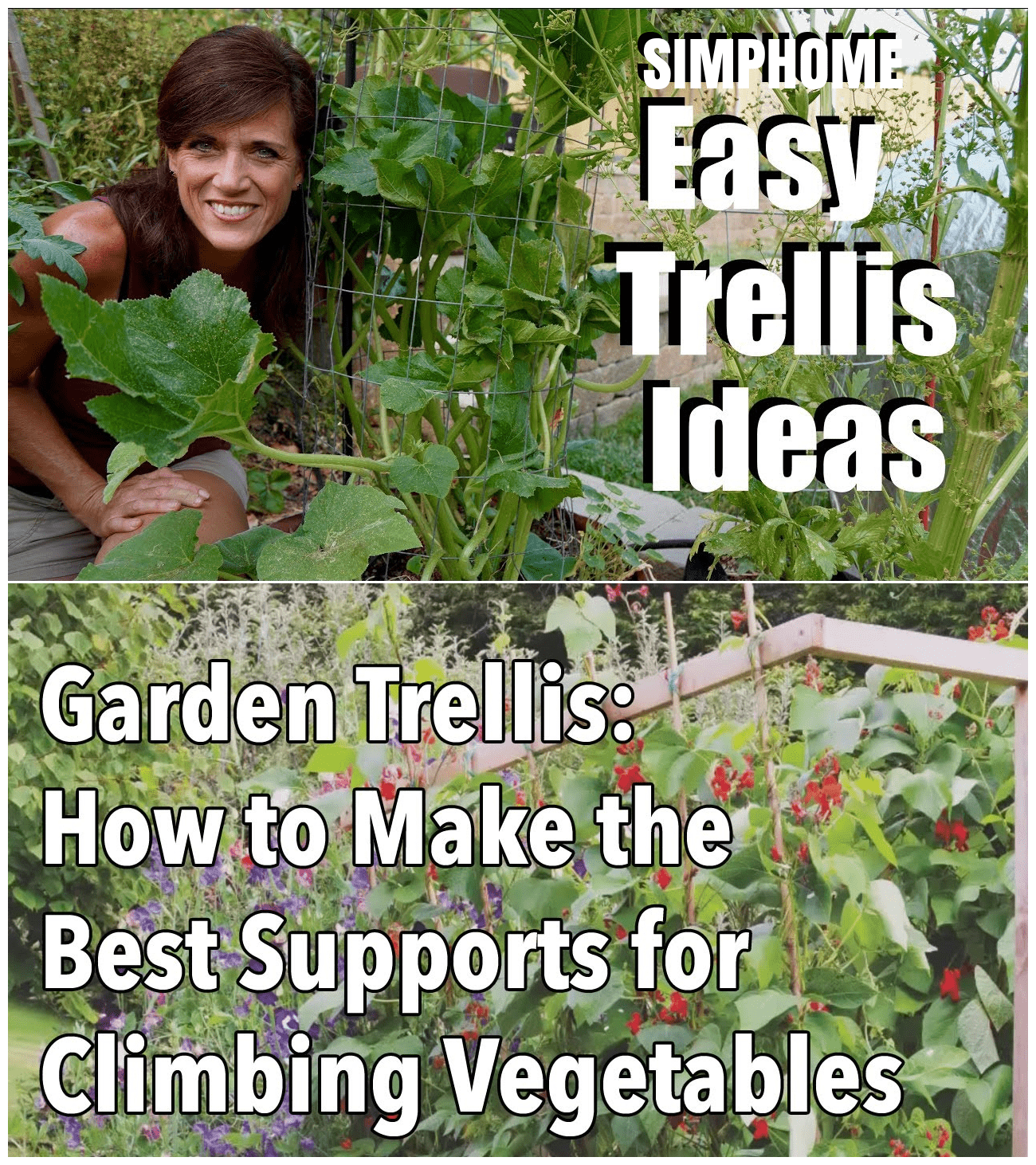 Simphome.com an easy trellis ideas climbing vegetable supports for 2020 2021 2022