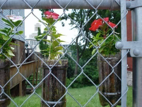 1. Simphome.com Make Your Fence Do a Double Duty 1
