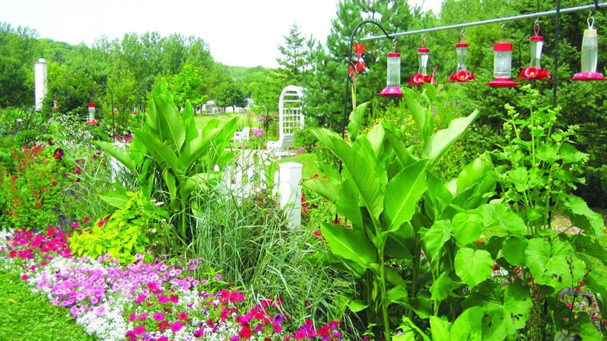 1.Simphome.com Hummingbird Garden Ideas 1