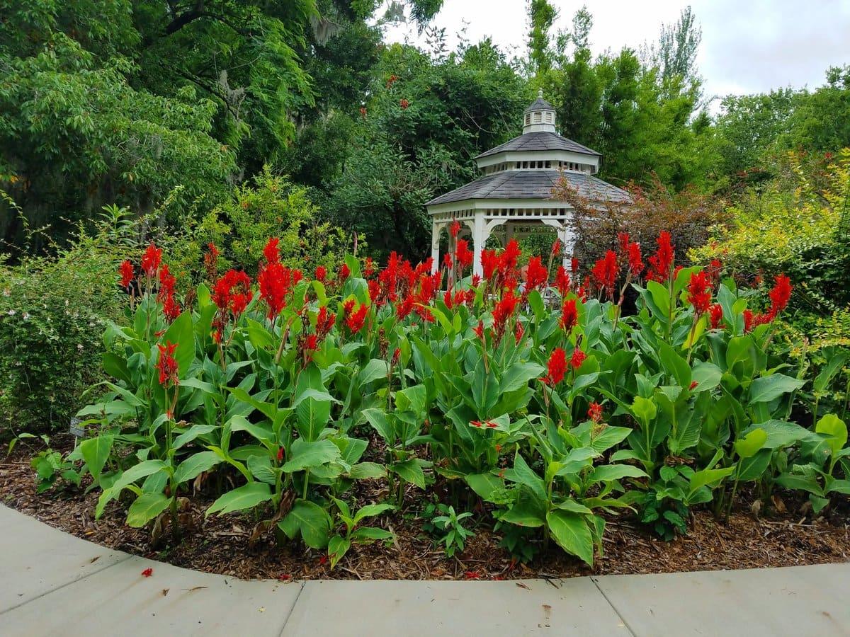 1.Simphome.com Hummingbird Garden Ideas 2