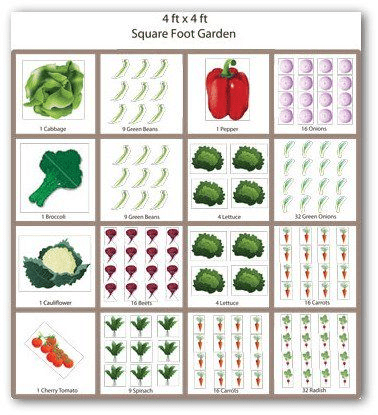 2.Simphome.com 4x4 Foot Garden 1