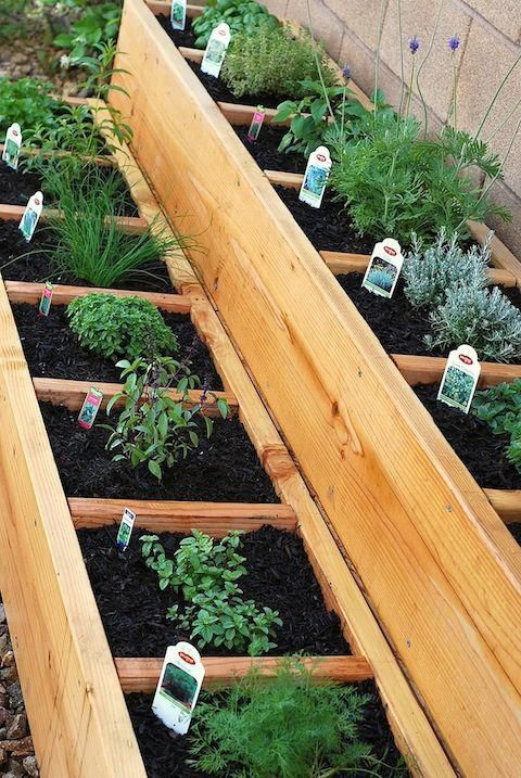 2.Simphome.com 4x4 Foot Garden 2