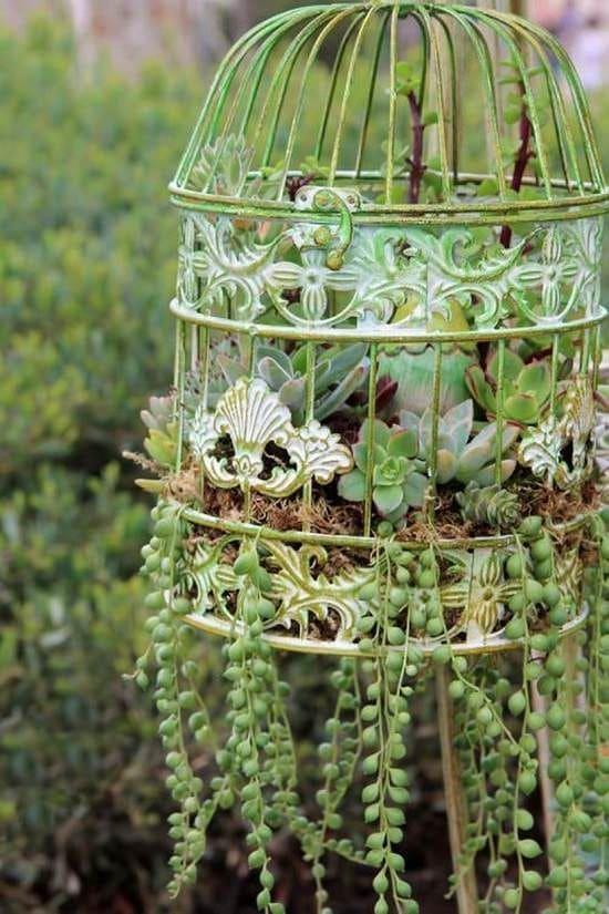2.Simphome.com Use Birdcage Planter