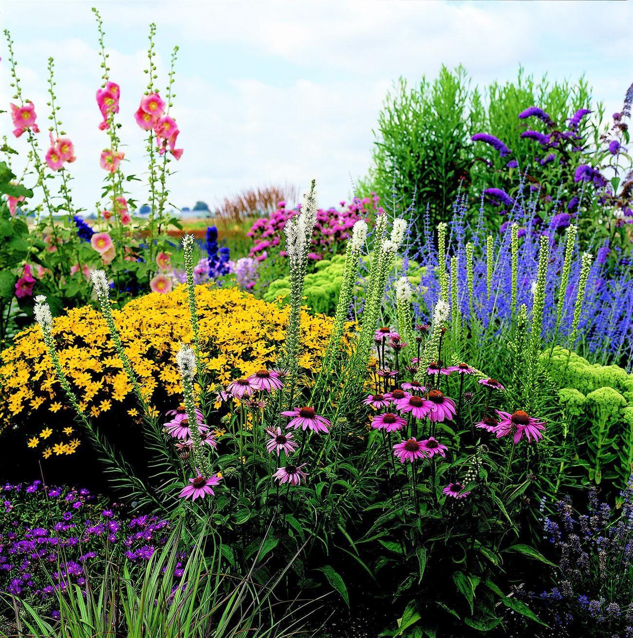 5.Simphome.com No Fuss Small Garden Plan 1