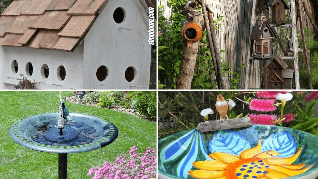 Simphome.com 10 Bird Garden Ideas Featured Image