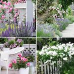 Simphome.com 10 rose garden ideas Featured Image