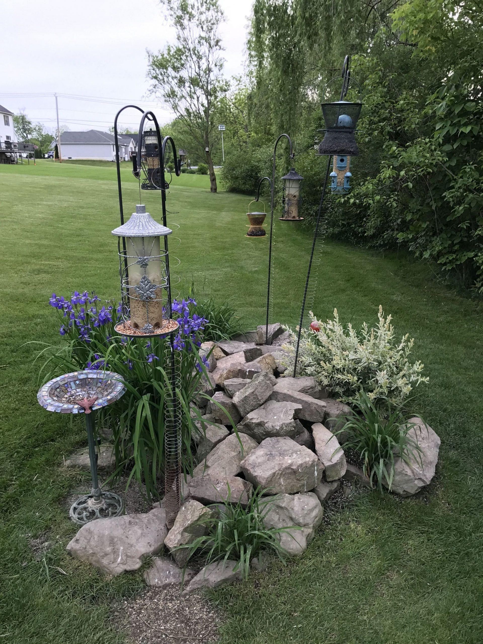 Simphome.com bird feeding station nature of the beast pinterest birds