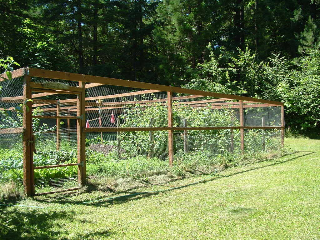 Picture of: 10 Wire Garden Fencing Ideas Simphome