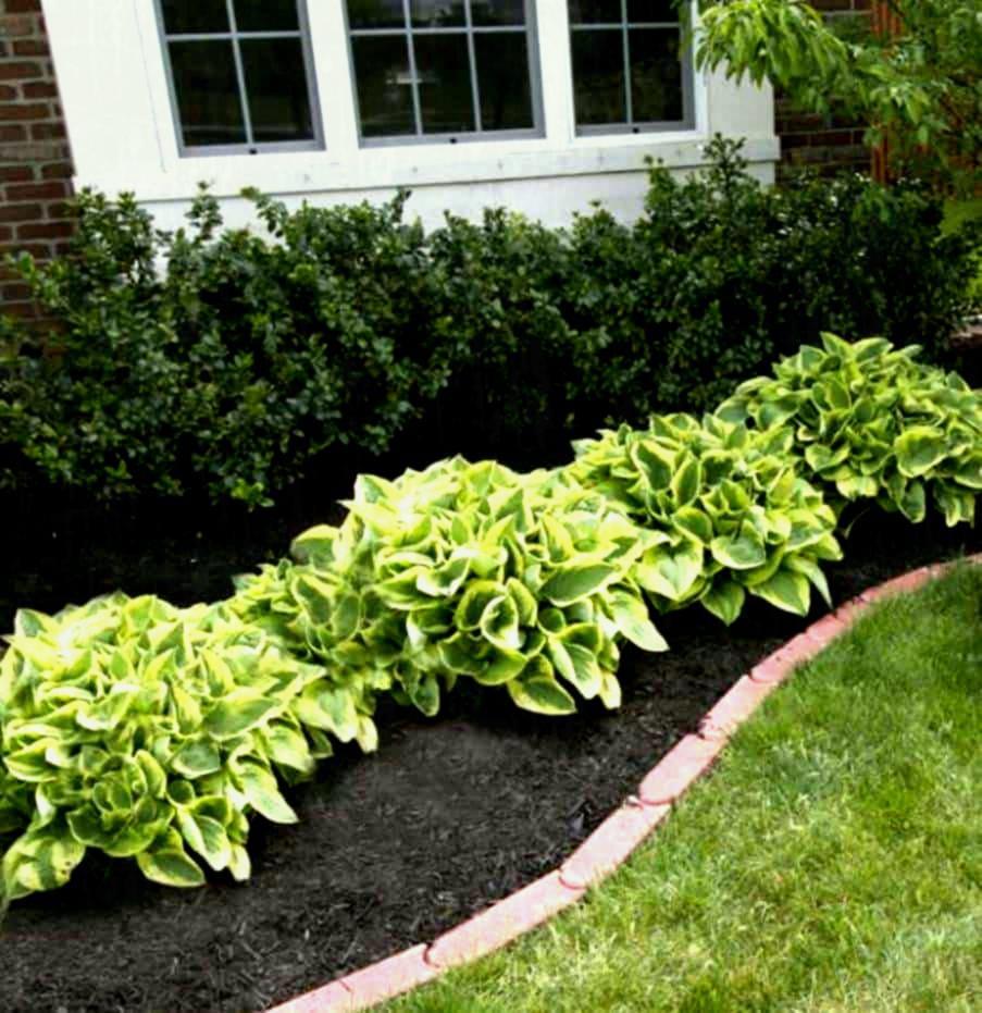 cheap flower garden ideas ujecdent for cheap flower garden ideas