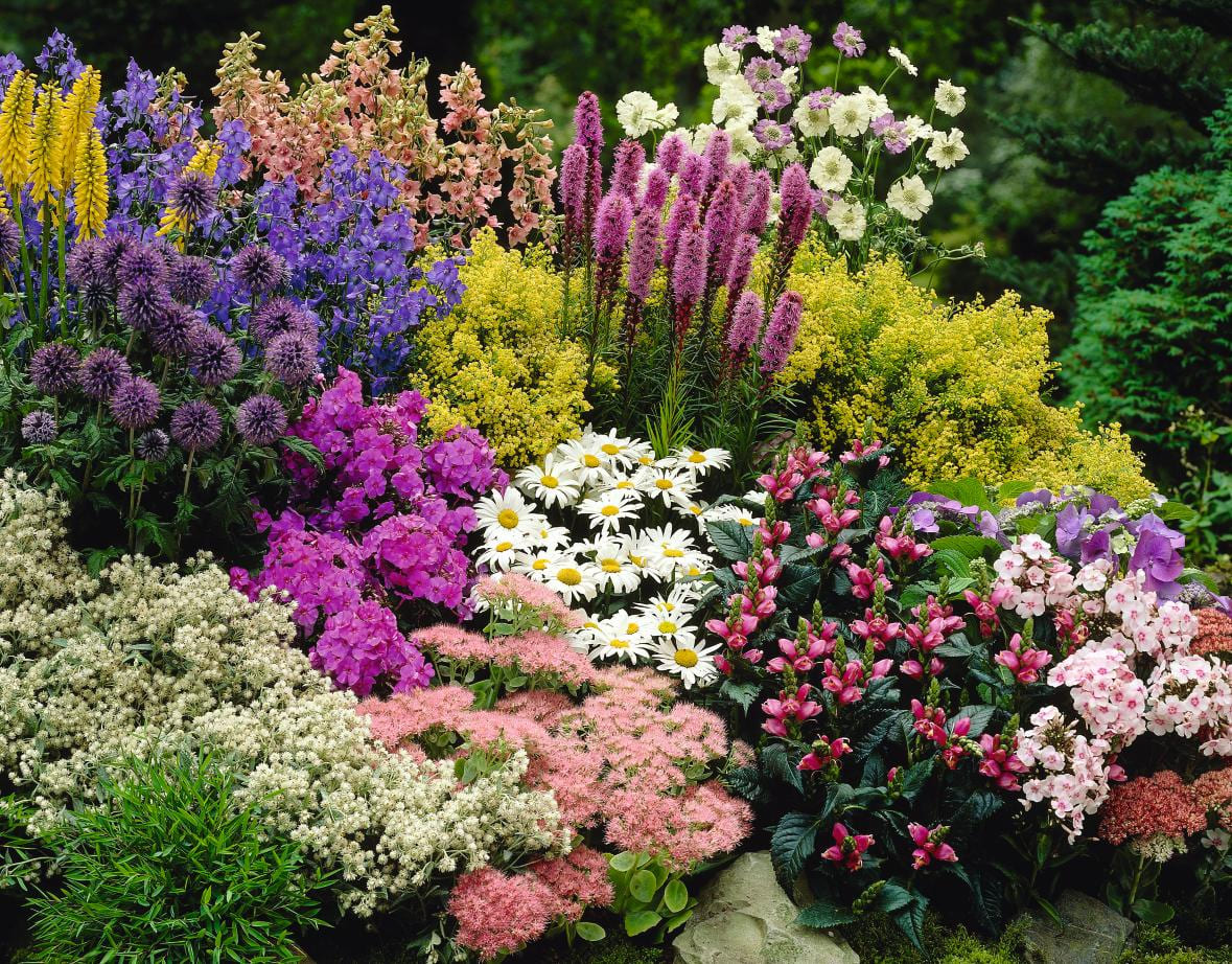 inexpensive landscaping ideas to beautify your yard freshome regarding cheap flower garden ideas