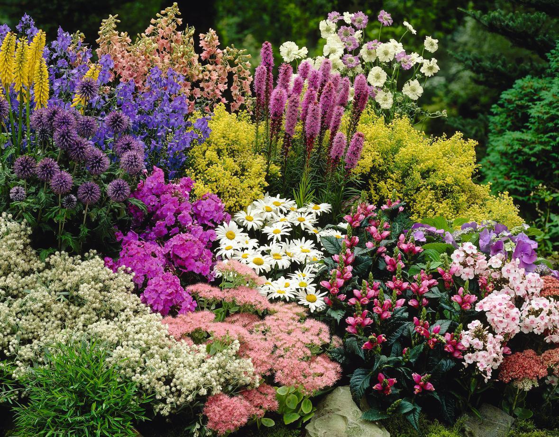 inexpensive landscaping ideas to beautify your yard freshome regarding cheap flower garden ideas