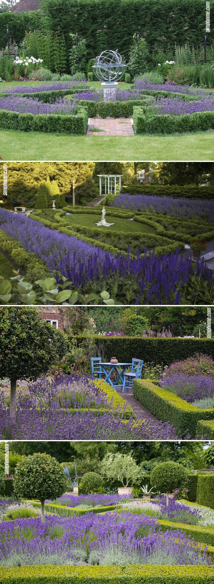 1.Traditional Lavender Gardens by Simphome.com