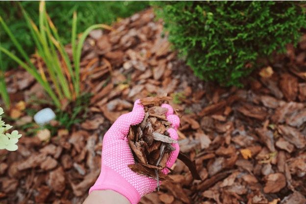 1.Use Mulch to care your garden by Simphome.com