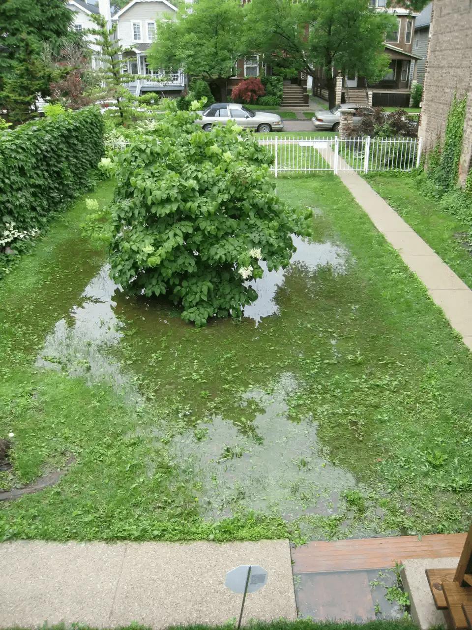 10.Simphome.com Get Rid of Flooded Backyard 1