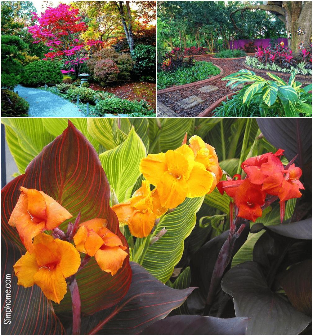 3.Colorful Backyard Ideas by Simphome.com