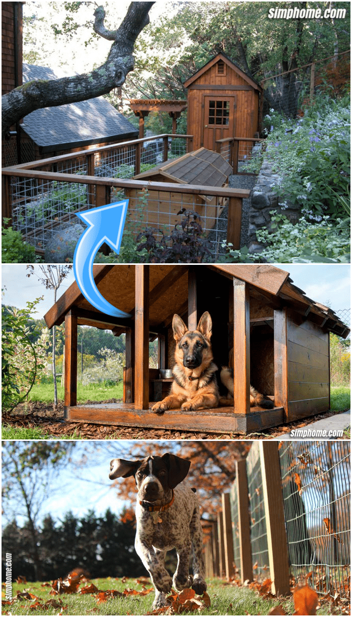 9.Cheap Backyard Makeover with Dogs by Simphome.com