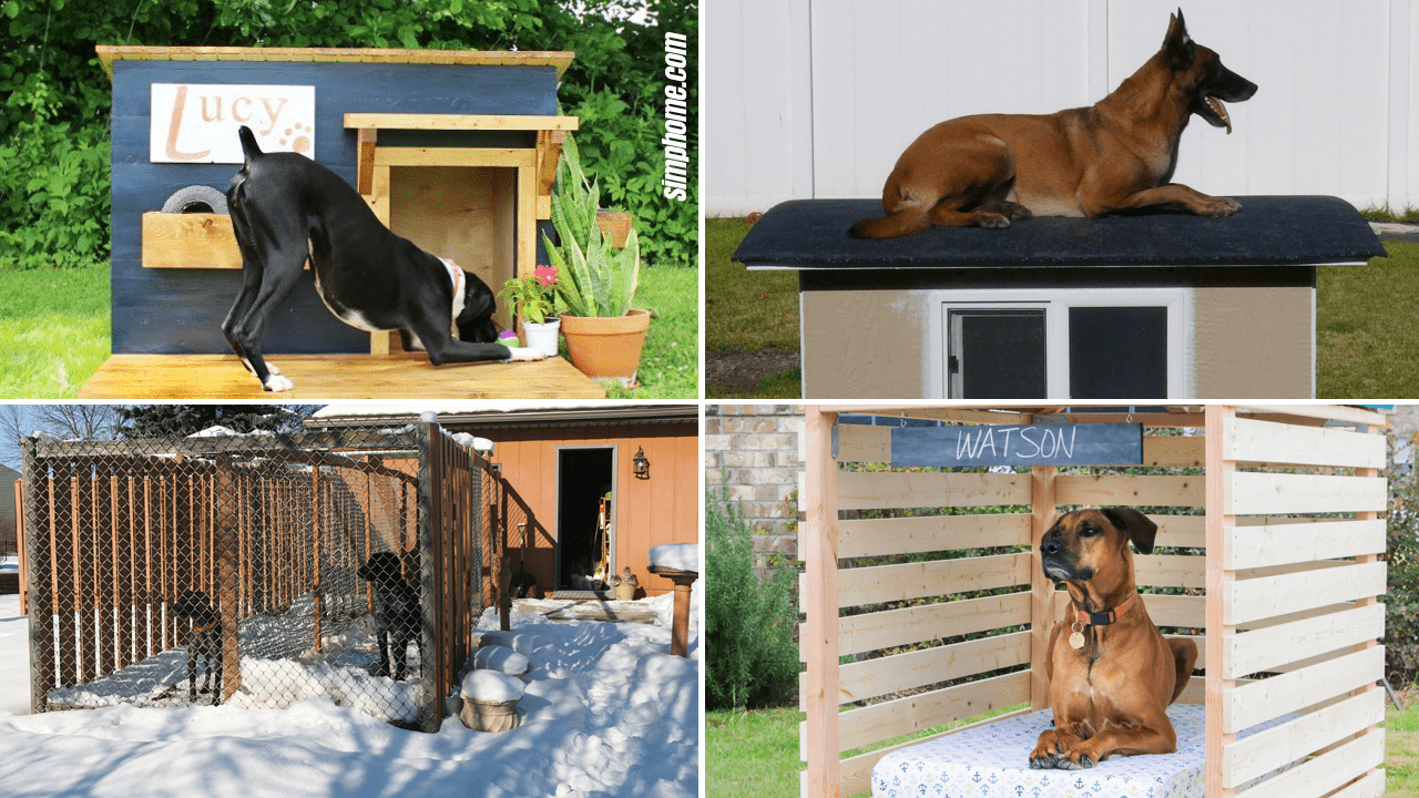 Dog Kennel Ideas by Simphome.com