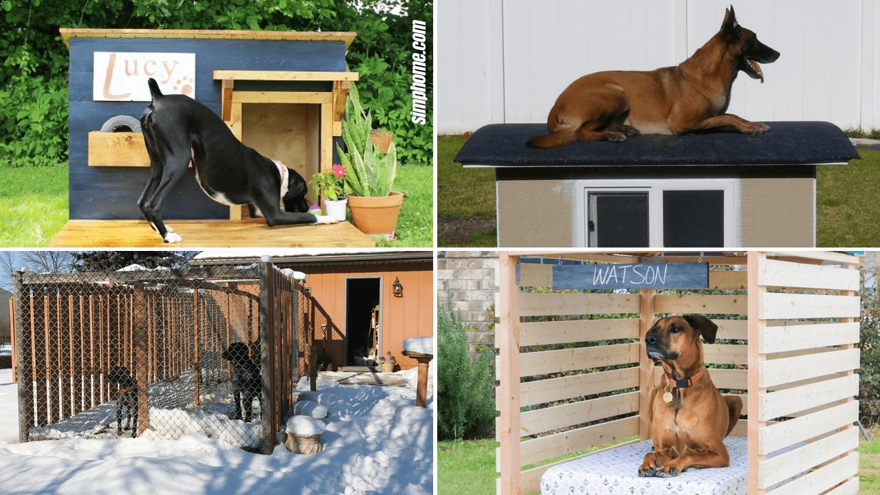 Dog Kennel Ideas by Simphome.com