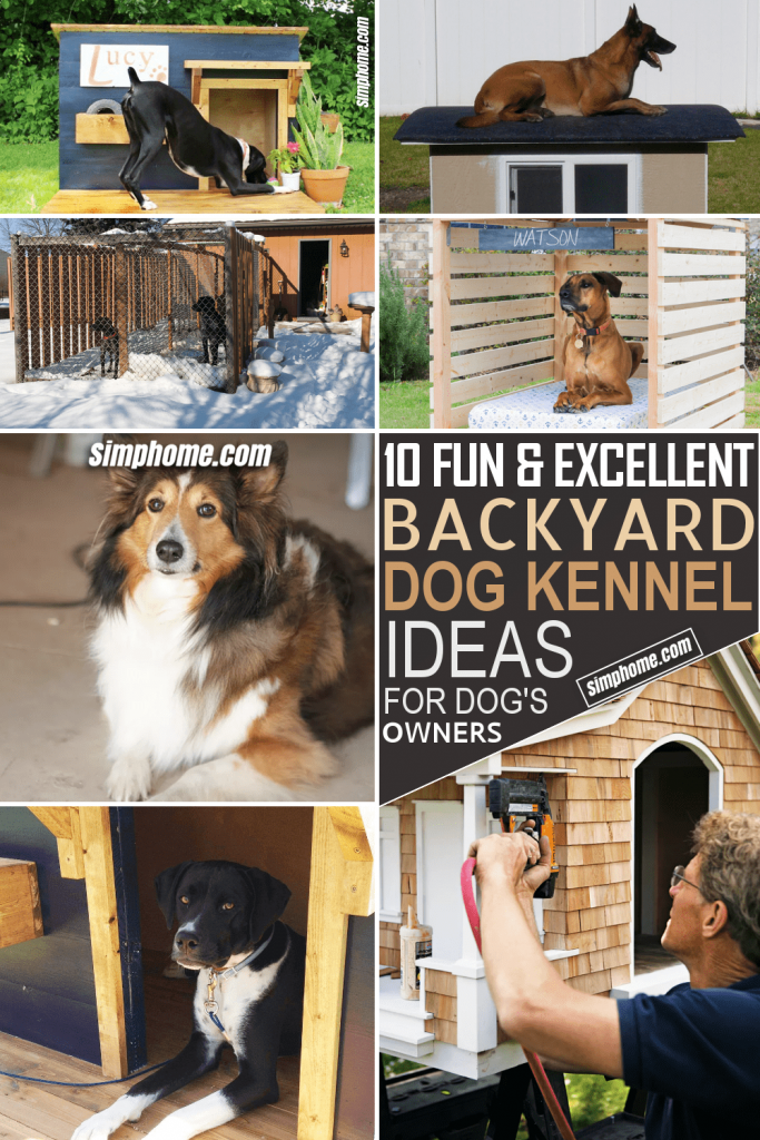 How to Build Backyard Dog Kennel Ideas by Simphome.com Featured Image