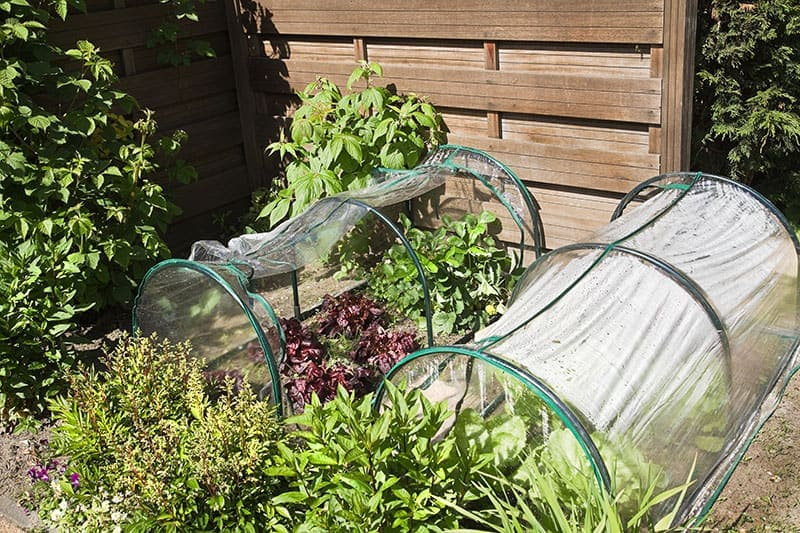 1.Polytunnel idea via simphome.com