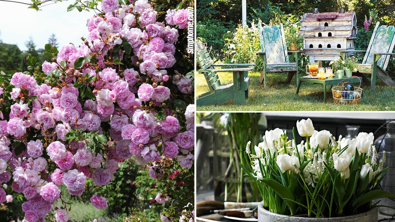 10 Country and Cottage Garden Decor Ideas via Simphome.com