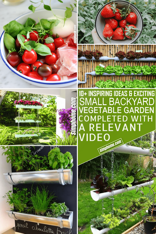 10 Small Backyard Vegetable Garden Ideas via Simphome.com Pinterest Image Feature