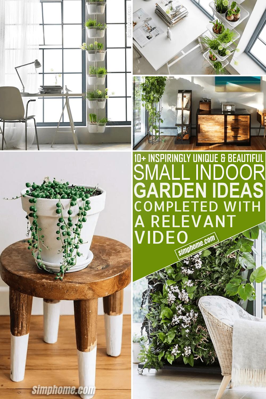 10 Small Indoor Garden Ideas via Simphome.com Featured Pinterest