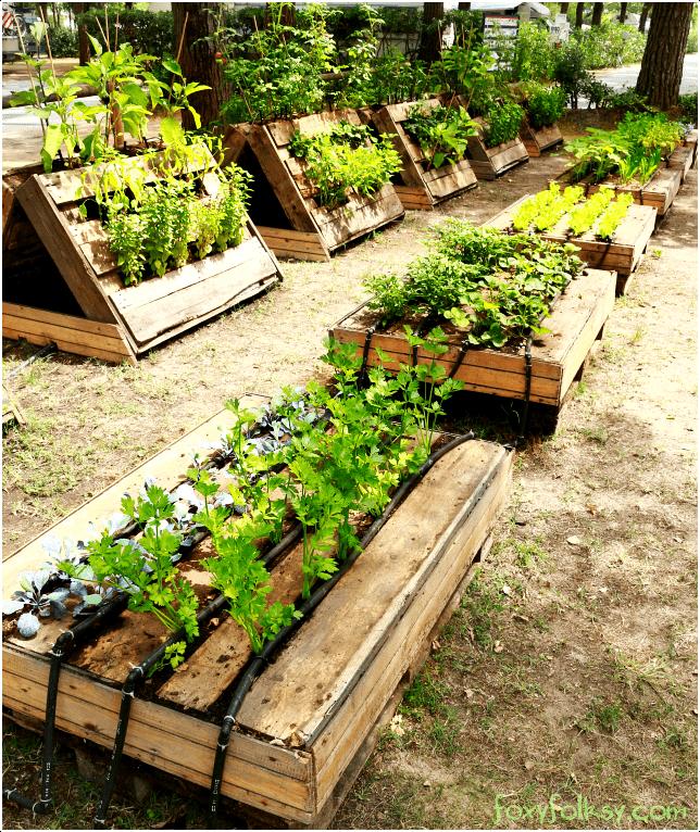 2.Pallet Garden Project via Simphome.com