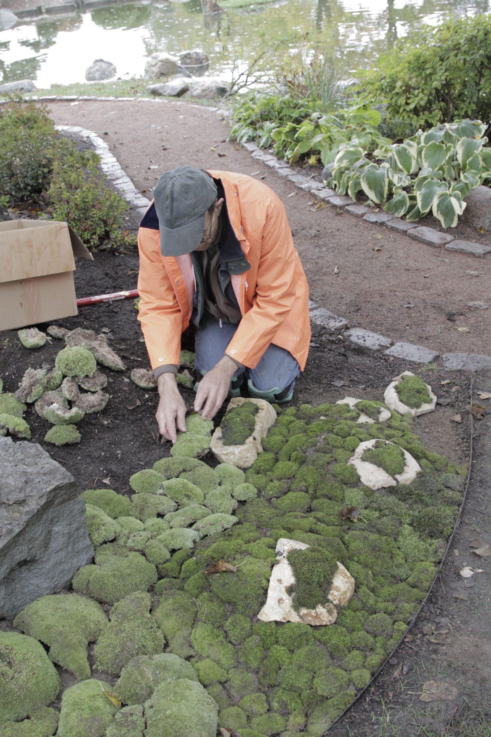 3.Cover It with Moss via Simphome.com Gardening