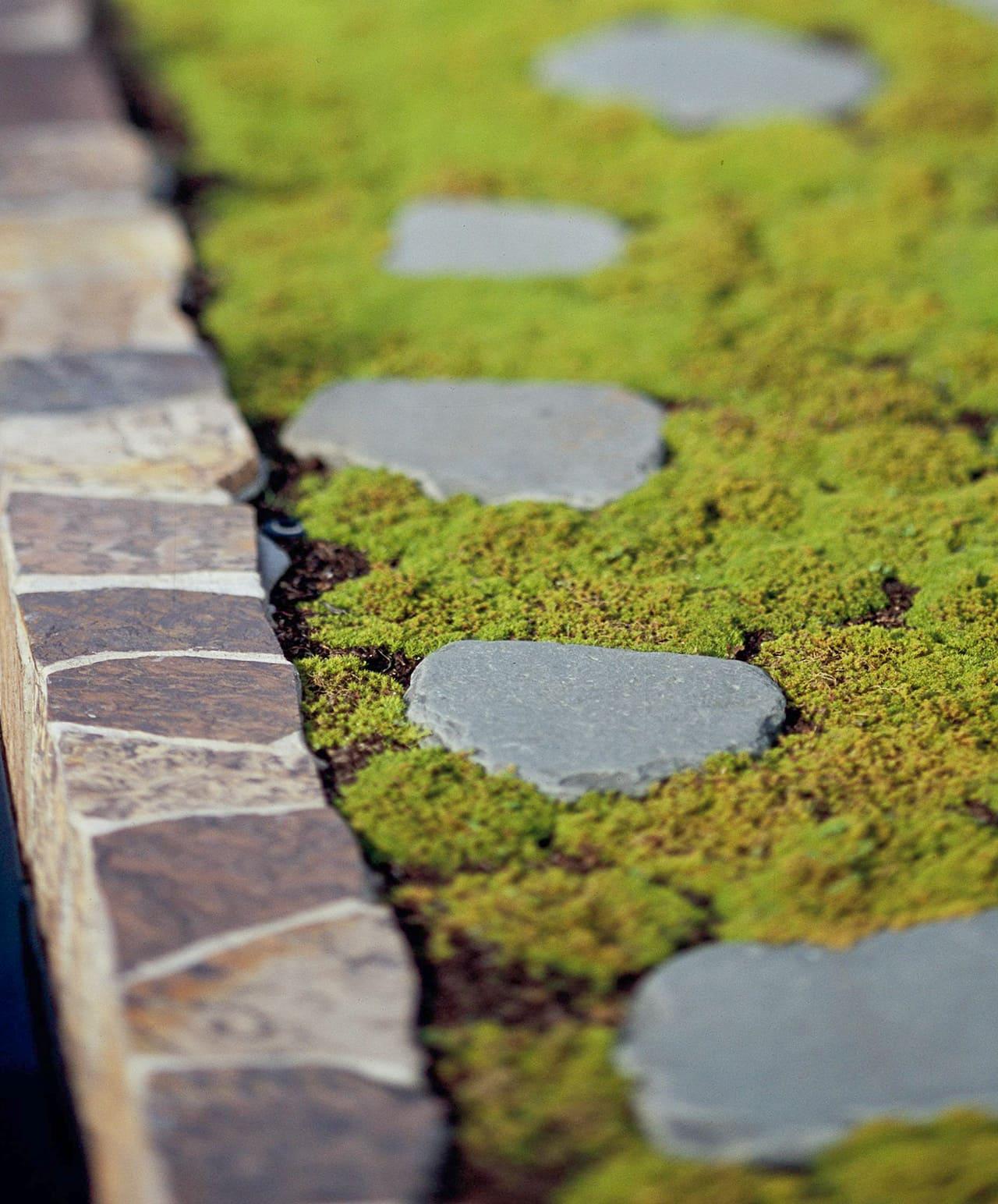 3.Cover It with Moss via Simphome.com Zoom