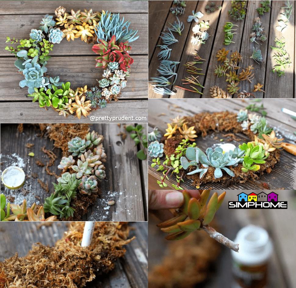 3.Succulent Wreath via Simphome.com