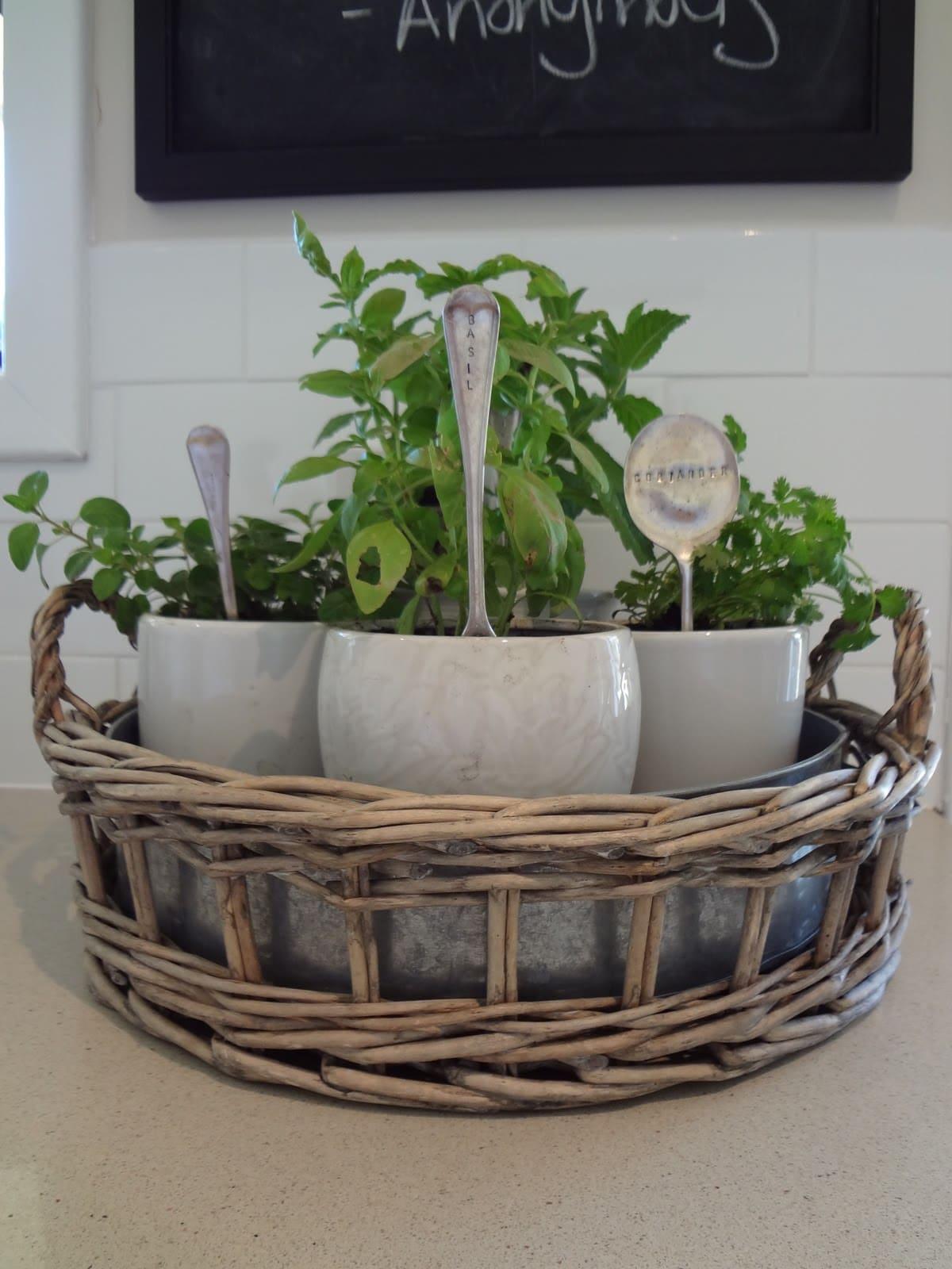 4.Herb Garden in Cups via Simphome.com