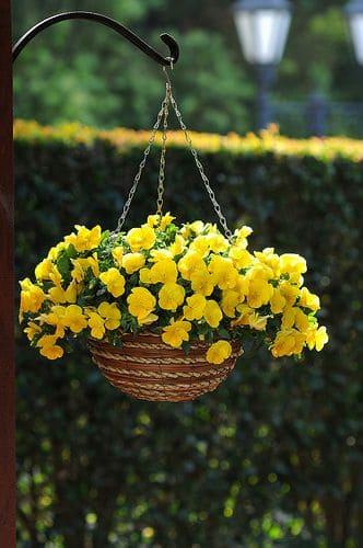 7.Hanging Herb Basket via Simphome.com 1