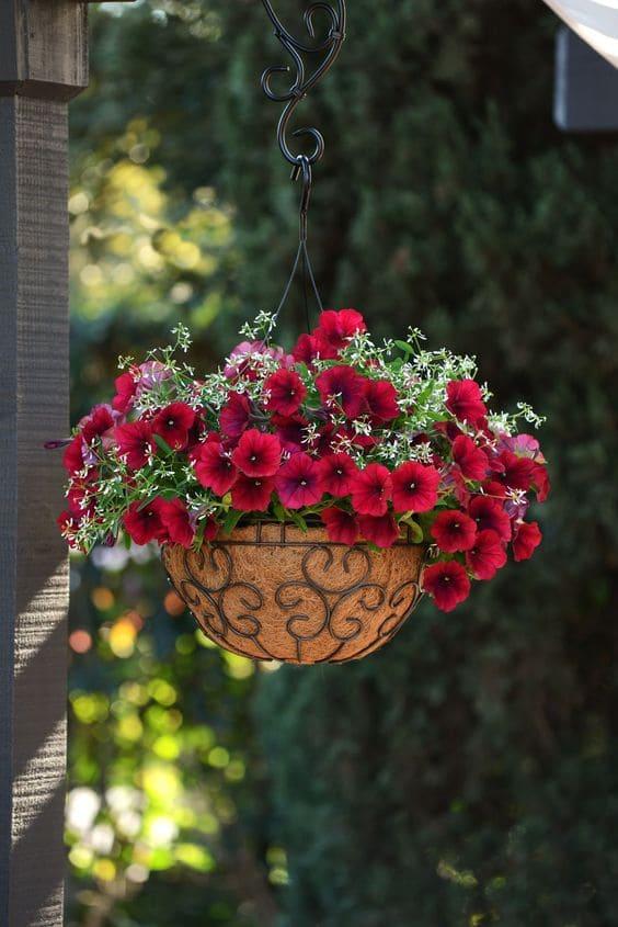 7.Hanging Herb Basket via Simphome.com 2