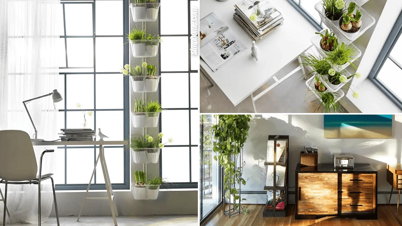 Small Garden Indoor Ideas via Simphome.com