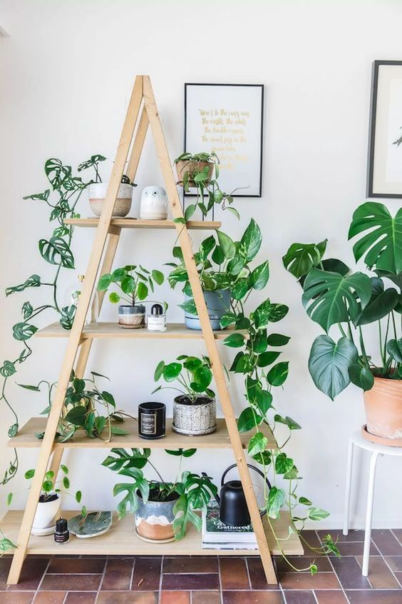 8.Add Plants via Simphome.com