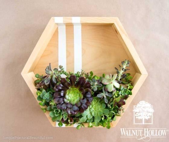 4. Modern Succulent Planter by simphome.com