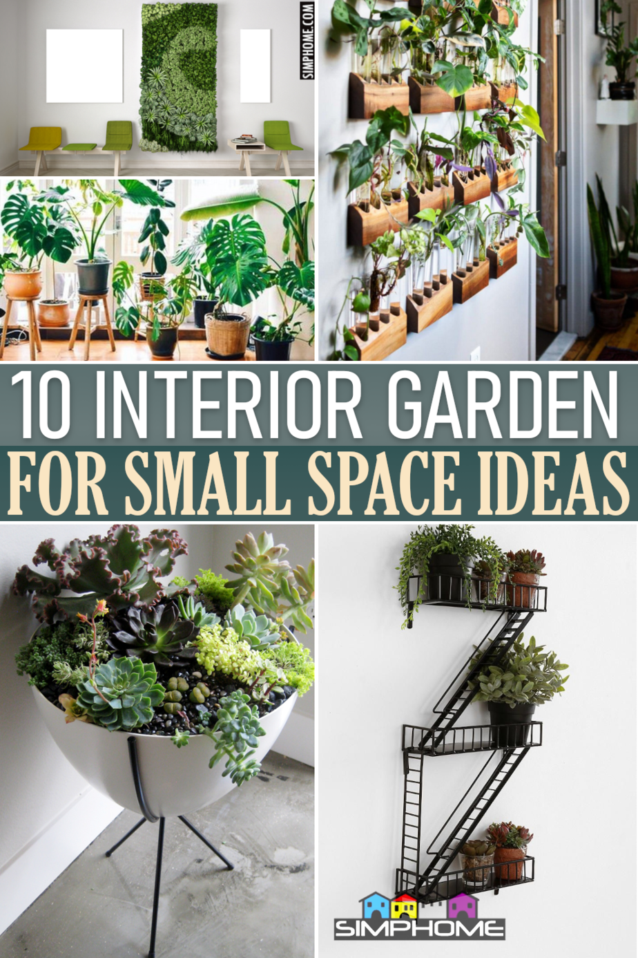 10 Interior Garden Ideas for Small Property Featured Image via SIMPHOME.COMThumbnail