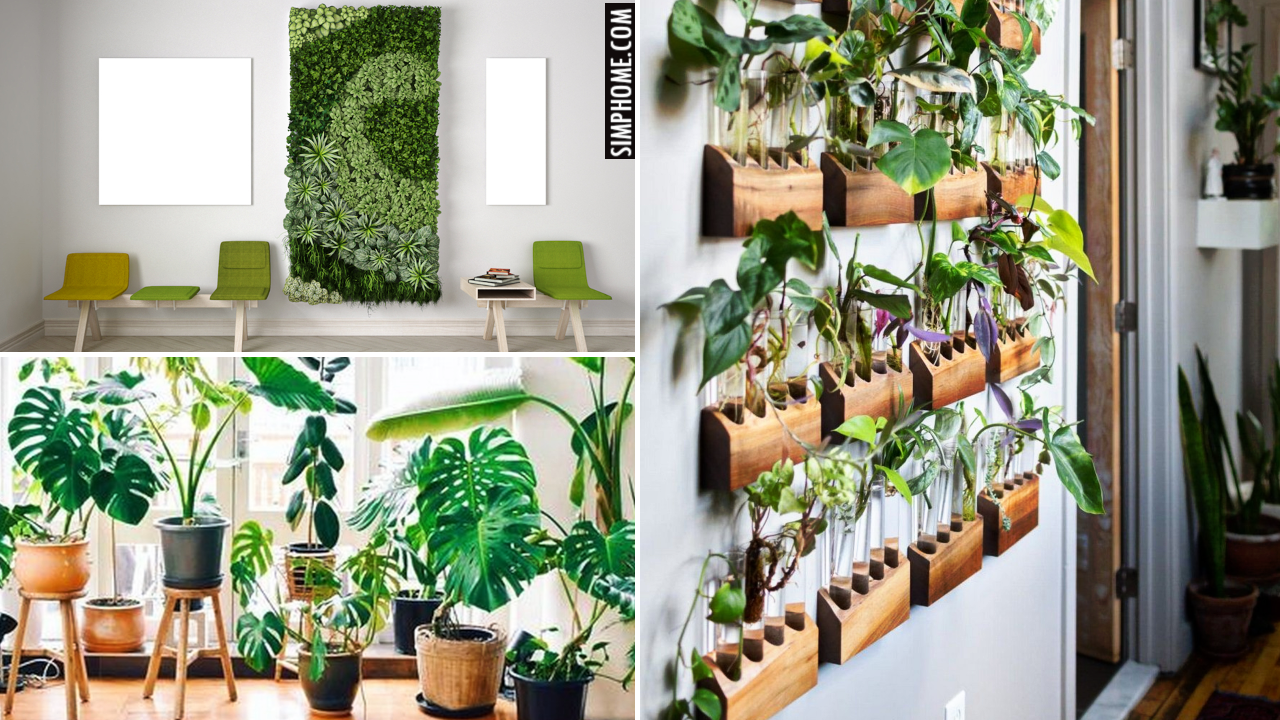 10 Interior Garden Ideas for Small Property via SIMPHOME.COMThumbnail