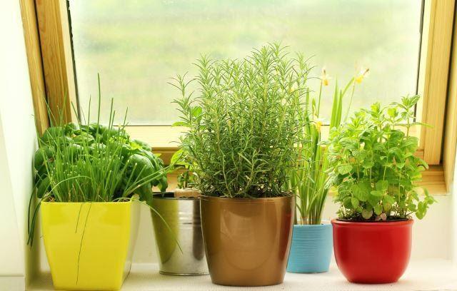 7. Window Herb Garden by simphome.com
