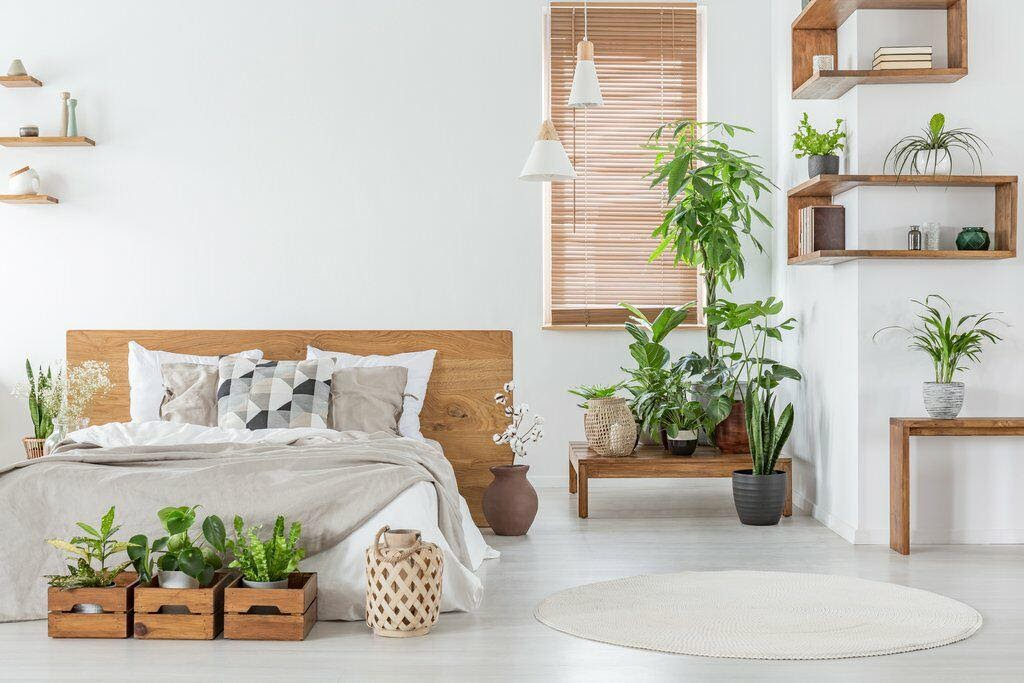 10. Bring Greenery to Your Room by simphome.com