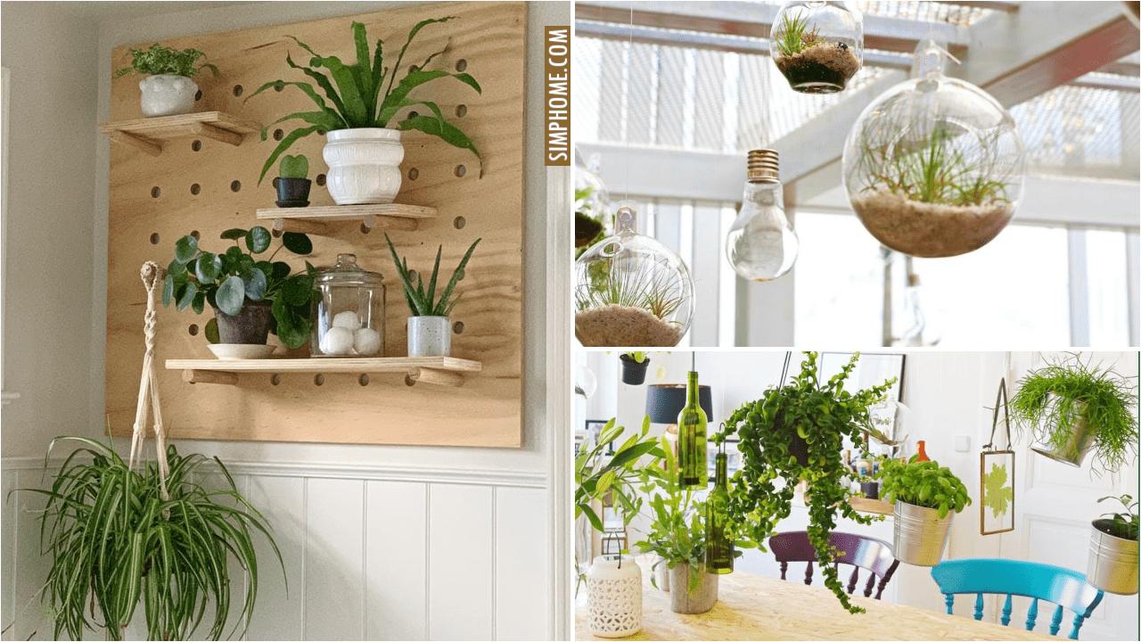 10 Indoor Floating Gardens