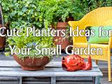 Cute Planters Ideas for Your Small Garden simphome.com