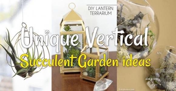 Unique Vertical Succulent Garden simphome com