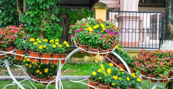 backyard garden ideas simphome com